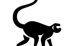 Rogue Monkey podcast